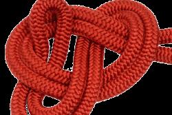 ACAM 301 (Red)